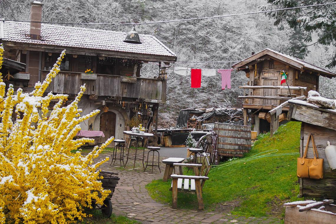 Bader Alm - Baden auf der Alm im Schwarzwald
