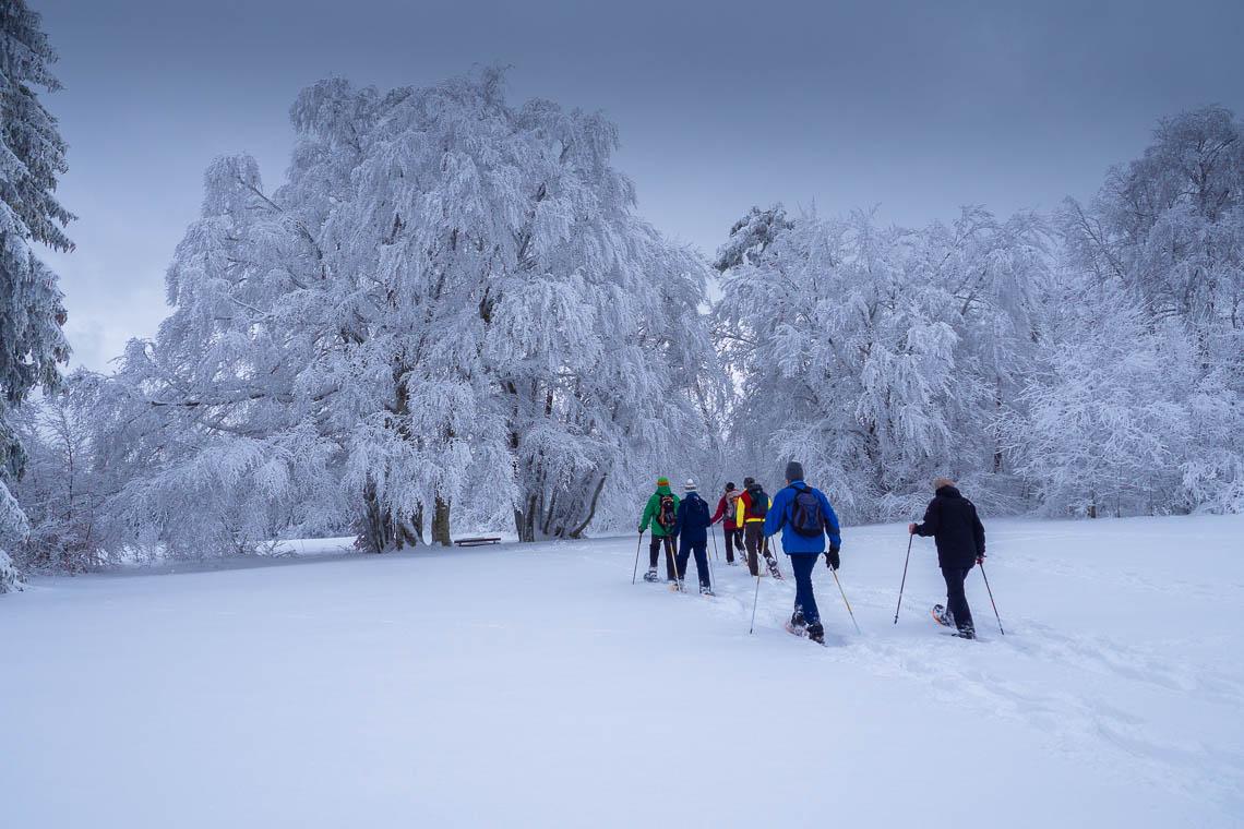 Besondere Ausflugsziele in Baden-Württemberg - Schneeschuhwandern