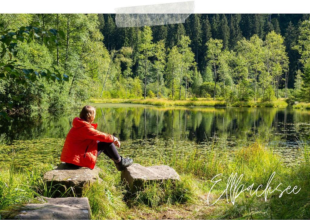 Trekking im Schwarzwald - Ellbachsee