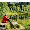 Trekking im Schwarzwald: Wildcampen, Rezepte & Packliste für eine Mehrtageswanderung