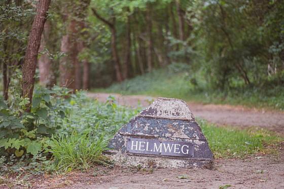 Grüne Wanderung durch Castricum
