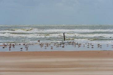 Schoorl aan Zee