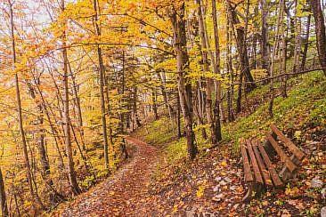 Traufgang Felsenmeersteig