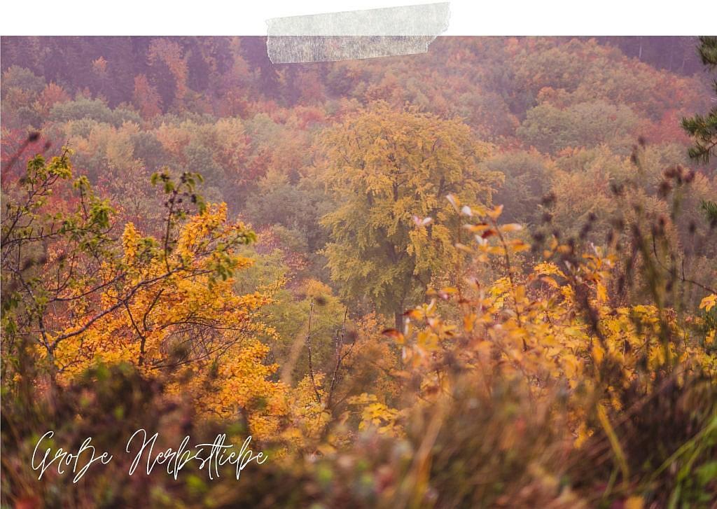 Die Traufgänge Schwäbische Alb können auch mystische Herbststimmung