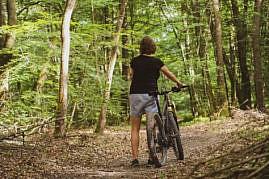Foret Senonches Mountainbike
