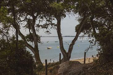 Bois de la Chaise Noirmoutier